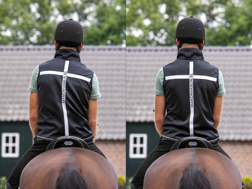 coaching paard